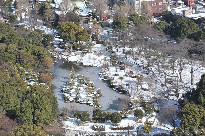 雪の隅田公園